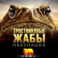 Тросниковые жабы: Оккупация 3D
