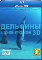 Дельфины в море: Голубой голубой океан 3D